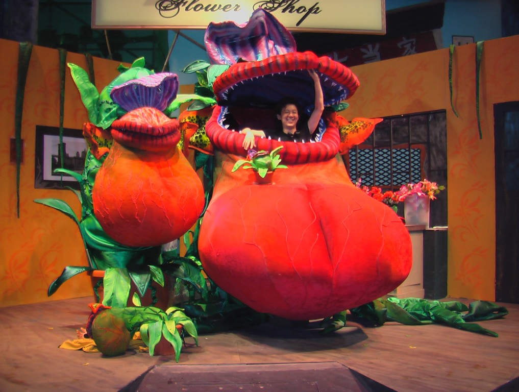 little shop of horrors puppet show
